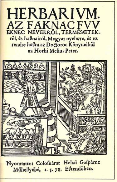 Gyógyítás a középkorban