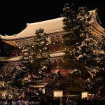 A japán újév, a Shōgatsu